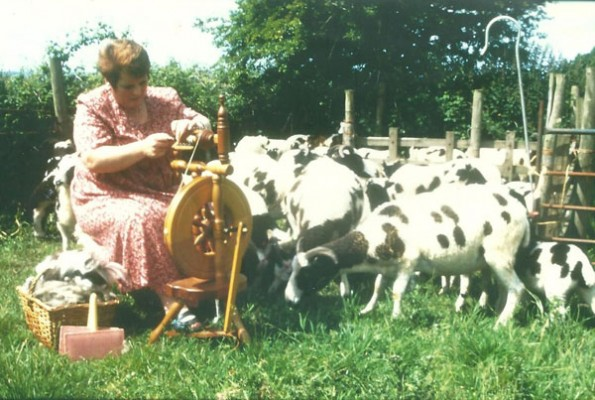 Rosemarie with sheep